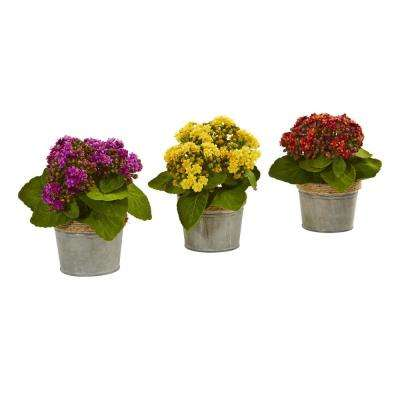 Indoor Kalanchoe Artificial Arrangements (Set of 3)