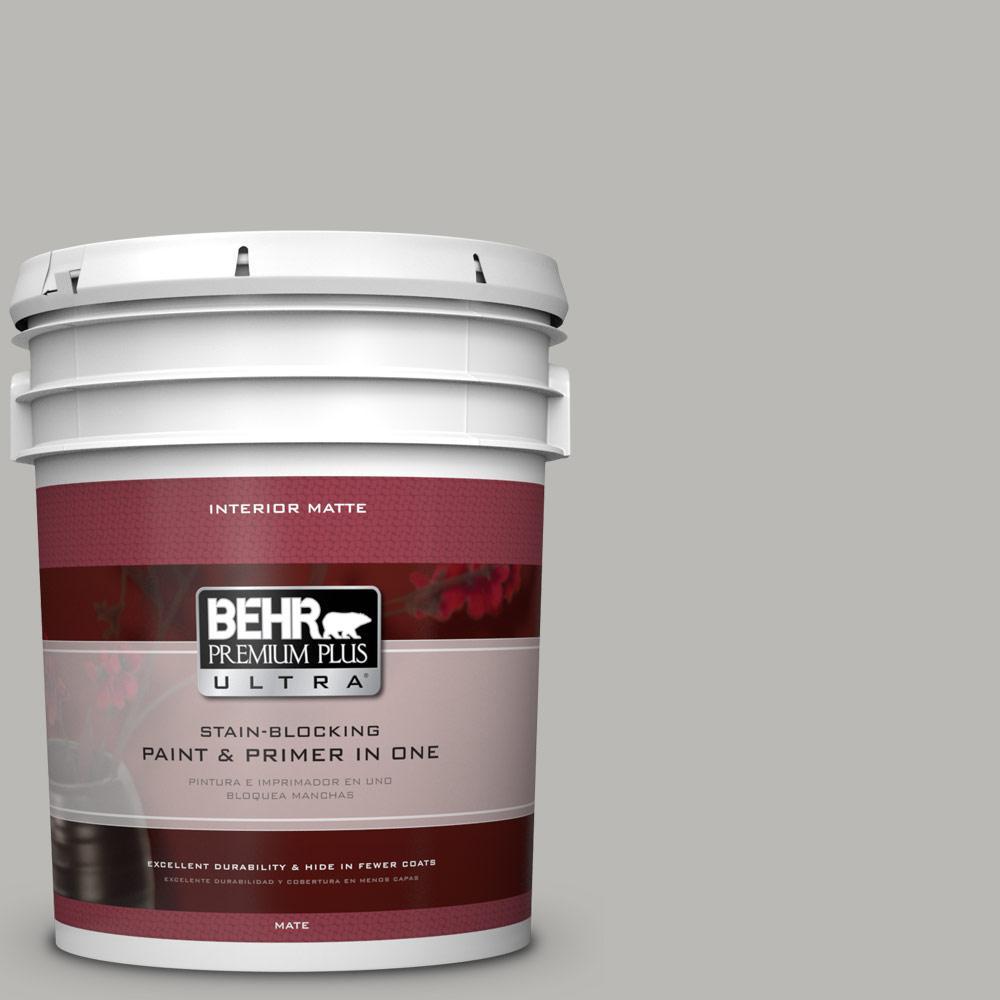#PPU18 11 Classic Silver Flat/Matte Interior Paint