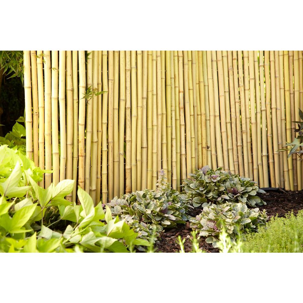 Exceptionnel Bamboo Garden Fence