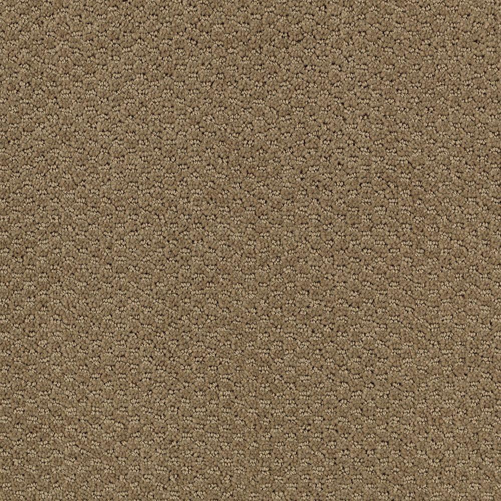 Katama II - Color Timberline 12 ft. Carpet