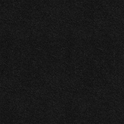 Black 2 ft. x 4 ft. Square Edge Fiberglass Lay-in Ceiling Panels (Case of 12)