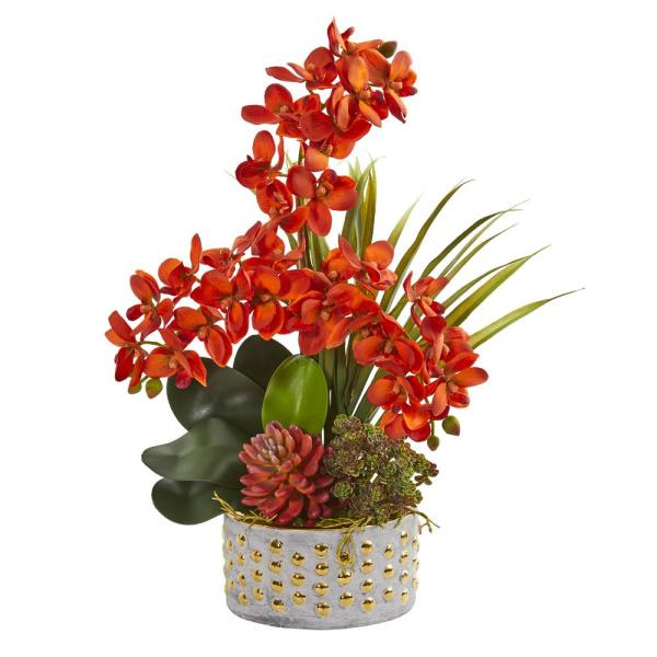 Nearly Natural Autumn Phalaenopsis Orchid and Succulent Artificial Arrangement