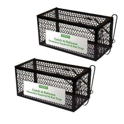 Catch And Release Humane Squirrel And Rodent Cage Trap 2 Pack