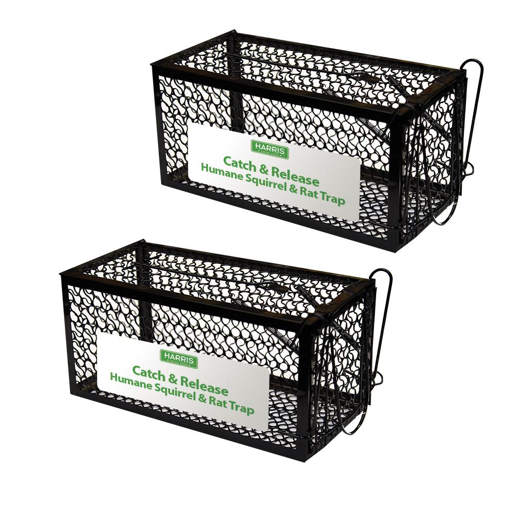Harris Catch And Release Humane Squirrel And Rodent Cage Trap 2 Pack 2st Live The Home Depot