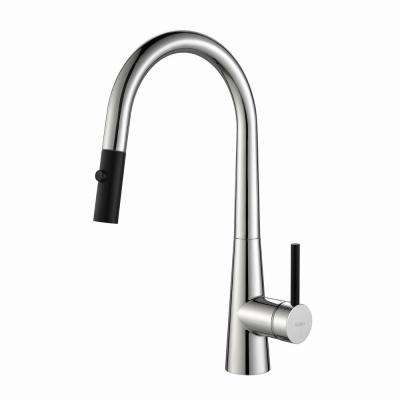Crespo Single-Handle Pull-Down Kitchen Faucet with Dual-Function Sprayer in Chrome