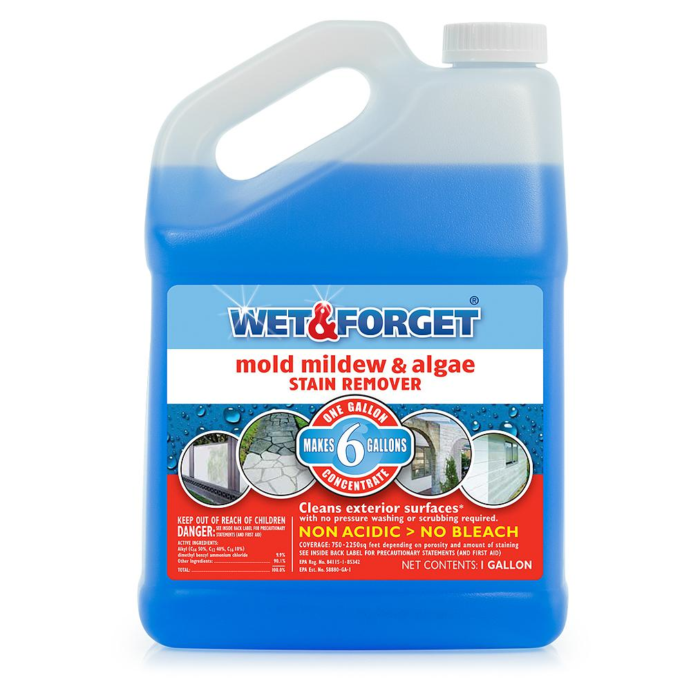 Wet Amp Forget 1 Gal Mold Mildew And Algae Stain Remover