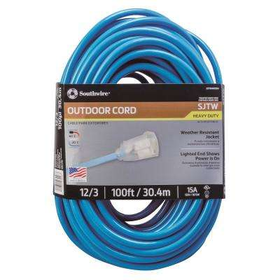 100 ft. 12/3 SJTW Outdoor Heavy-Duty Neon Blue Extension Cord with Power Light Plug