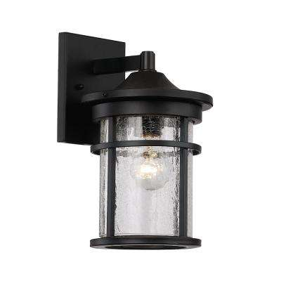 Small 1 Light Black Outdoor Wall Mount Lantern