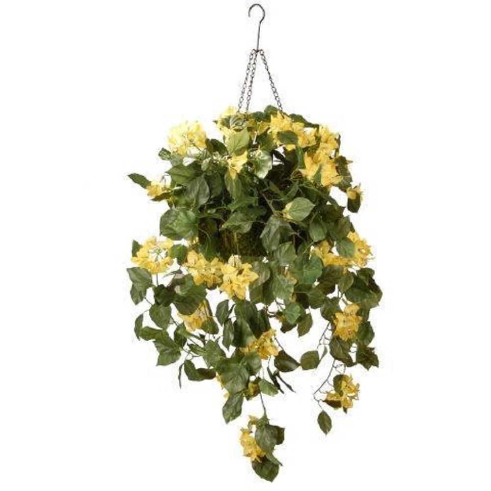 National Tree Company 14 In Bougainvillea Plant Hanging Basket