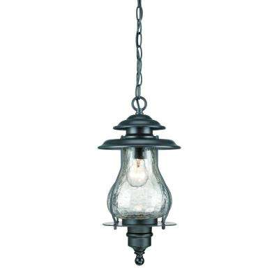 Blue Ridge Collection 1-Light Matte Black Outdoor Hanging Lantern
