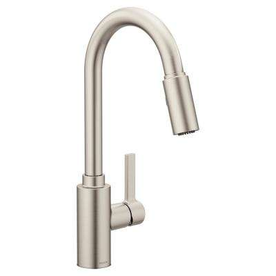 Genta Single-Handle Pull-Down Sprayer Kitchen Faucet with Reflex in Spot Resist Stainless