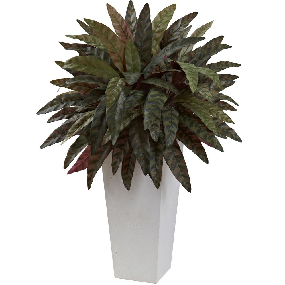 Nearly Natural Peacock Plant With White Planter 6841 The Home Depot