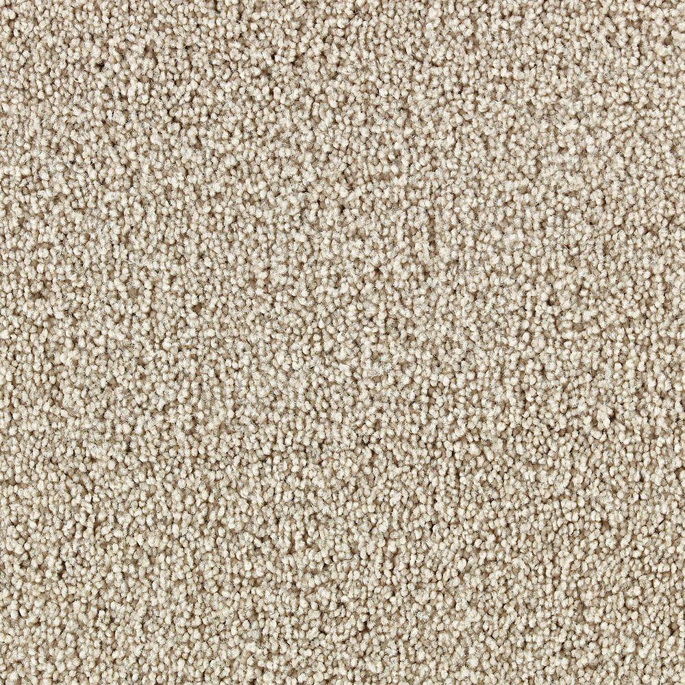 Martha Stewart Living Weston Park Sharkey Gray - 6 in. x 9 in. Take Home Carpet Sample-DISCONTINUED