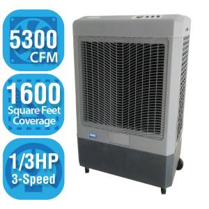 Click here to buy Hessaire 5,300 CFM 3-Speed Portable Evaporative Cooler for 1,600 sq. ft. by Hessaire.