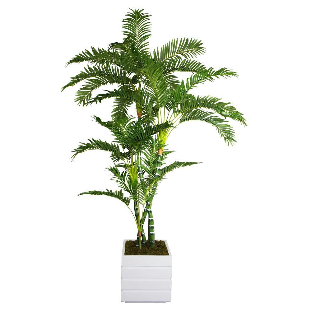 78 in. Tall Palm Tree in 14 in. Fiberstone Planter