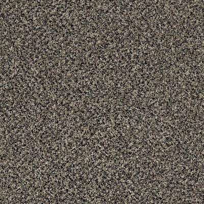 Carpet Sample - Wholehearted I - Color Toasted Coconut Twist 8 in. x 8 in.