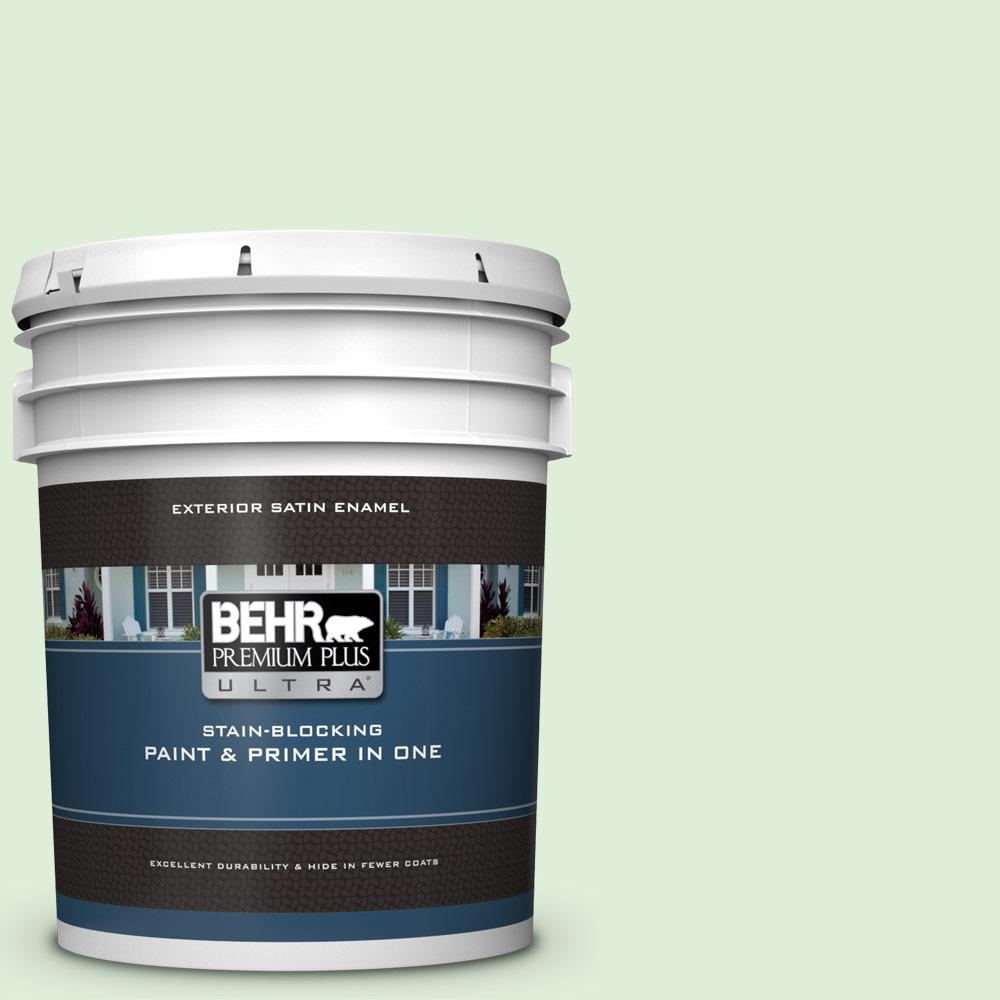 Cucumber Crush Interior Exterior Paint