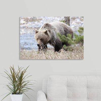 """Behind the Grass"" by Brian Wolitski Canvas Wall Art"
