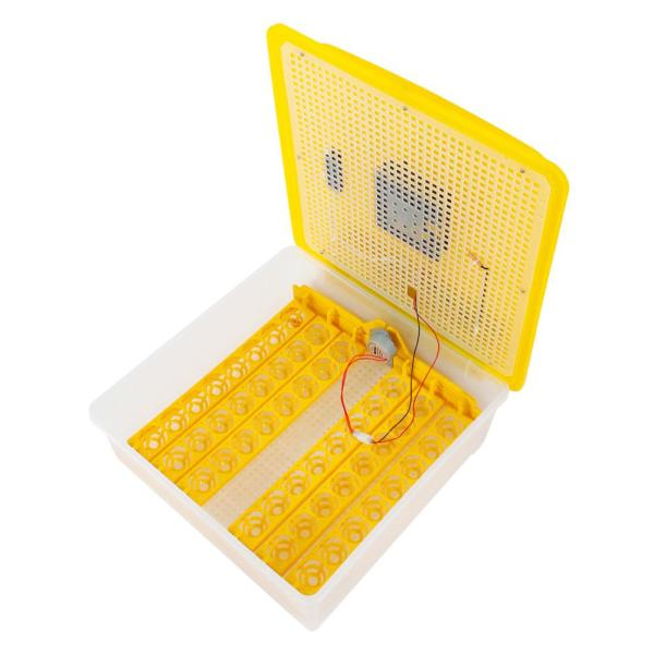 undefined 48-Egg Home Use Automatic Turning Poultry Incubator (110V) US Standard Yellow & Transparent