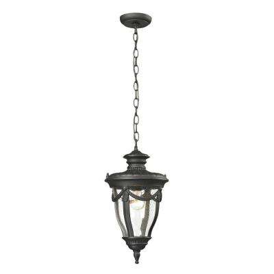 Langley Collection 1-Light Textured Matte Black Outdoor Pendant