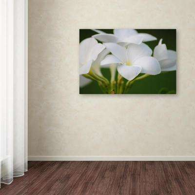 """30 in. x 47 in. """"Picture Perfect"""" by Monica Mize Printed Canvas Wall Art"""