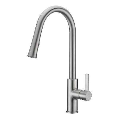 Serena Single Handle Pull Down Sprayer Kitchen Faucet In Brushed Nickel
