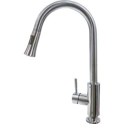 Flow Max RV Kitchen Faucet - Alphorn Pull Down Shaped
