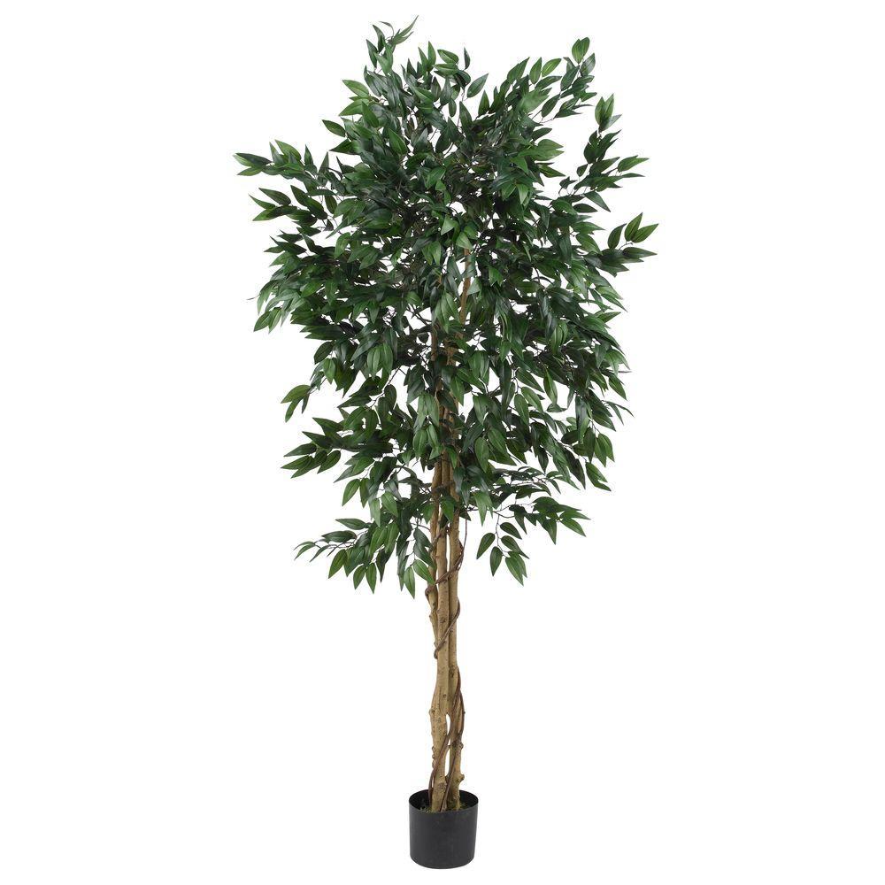 5 ft. Smilax Silk Tree