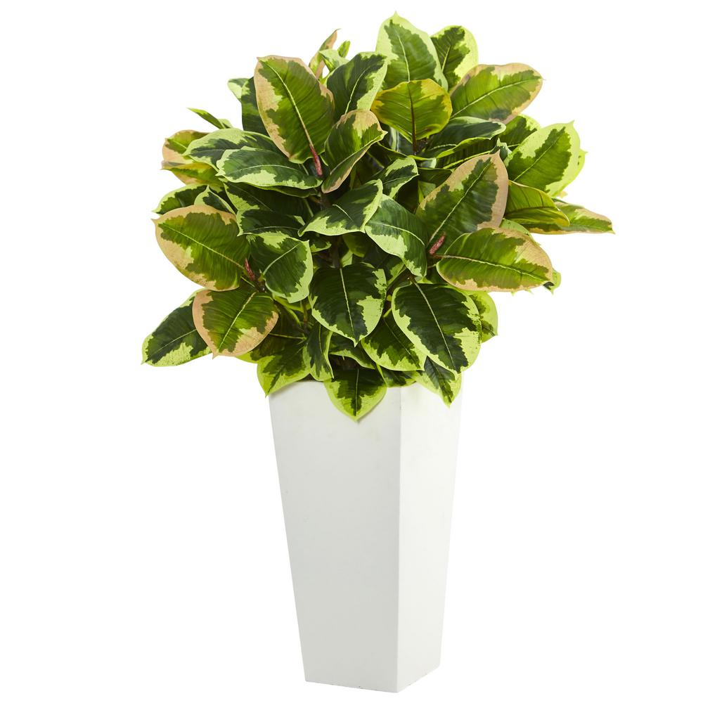 Nearly Natural Variegated Rubber Artificial Plant in White Tower Planter (Real Touch)