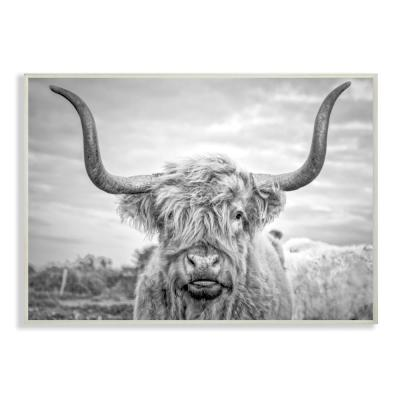 "13 in. x 19 in. ""Black and White Highland Cow Photograph"" by Joe Reynolds Printed Wood Wall Art"