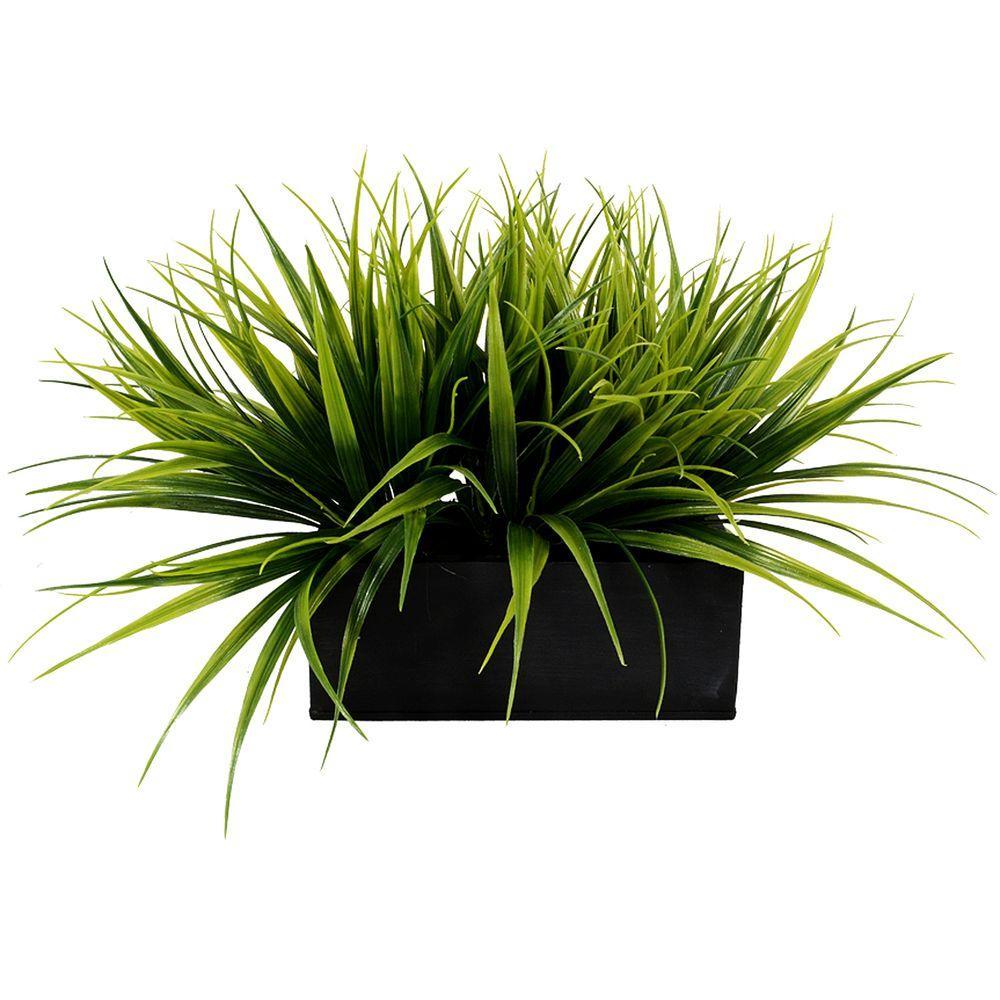 Grass Ledge
