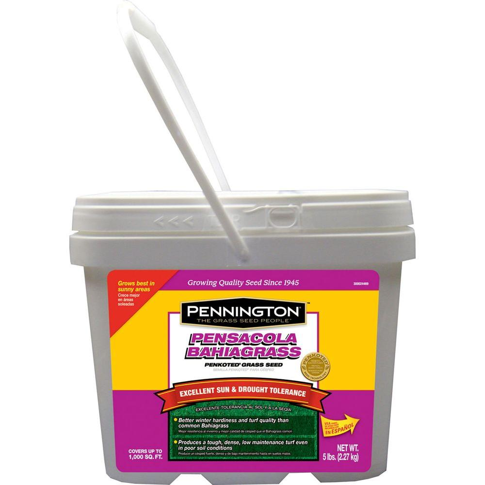 Pennington 5 lb. Pensacola Bahiagrass Grass Seed