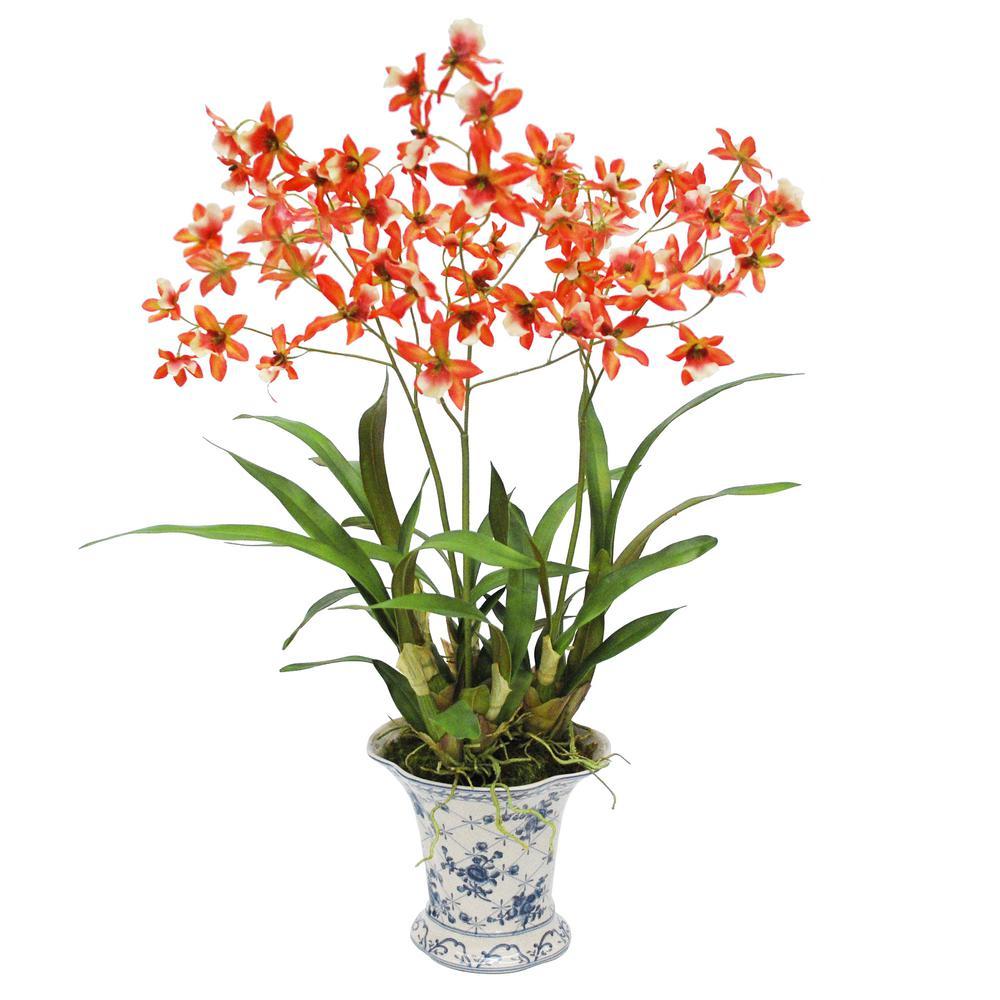 Jane seymour botanicals 29 in dancing orchid in french toile pot dancing orchid in french toile pot izmirmasajfo