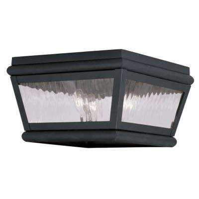 Exeter 2-Light Black Outdoor Incandescent Ceiling Mount