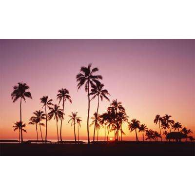120 in. x 60 in. Window Well Scene - Palms