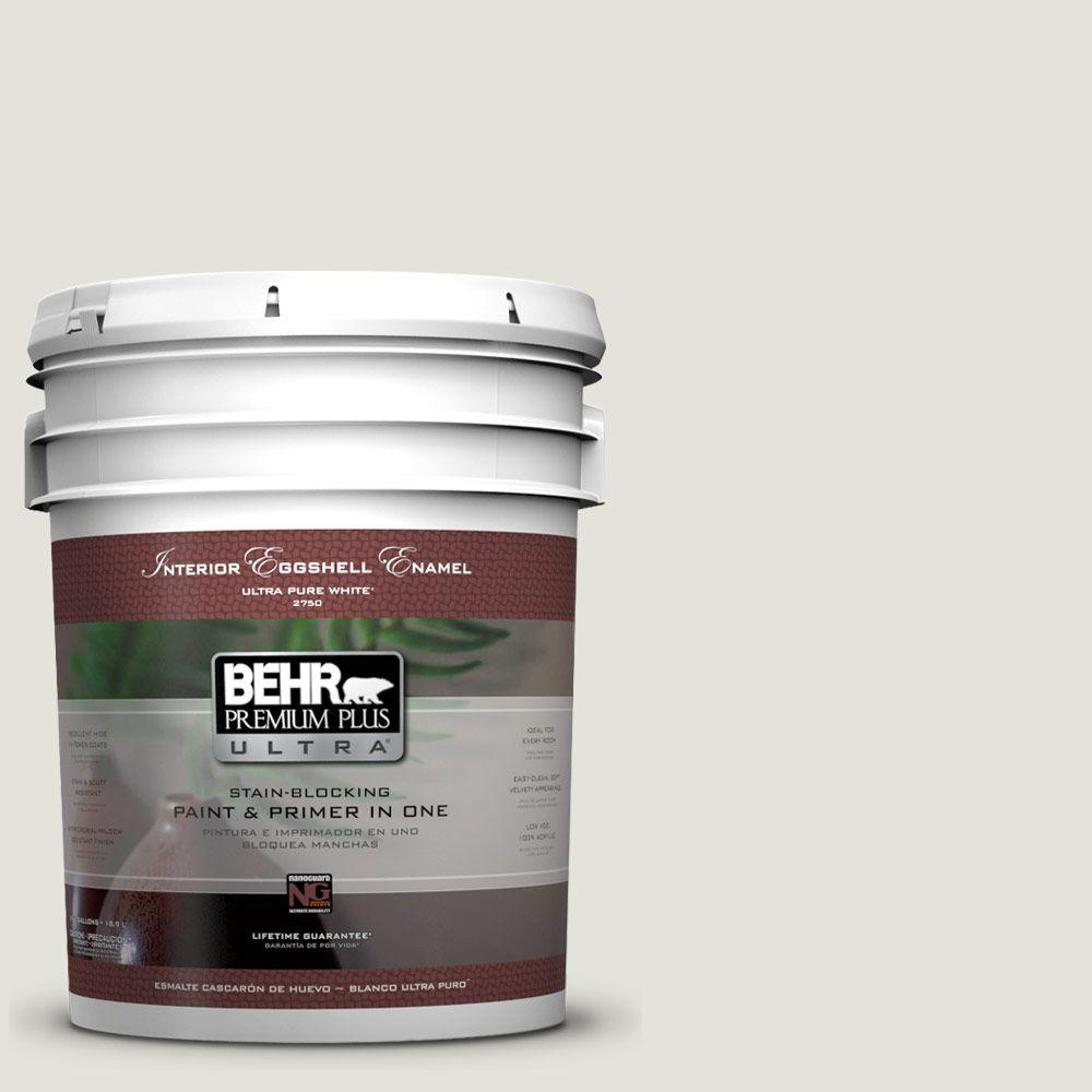 BEHR Premium Plus Ultra Home Decorators Collection 5-gal. #HDC-NT-24 Glacier Valley Eggshell Enamel Interior Paint