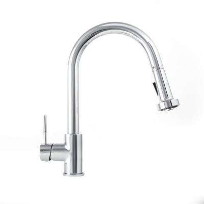 Monet Kitchen Single-Handle Pull Down Sprayer Kitchen Faucet in Chrome Finish