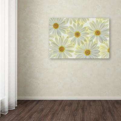 "16 in. x 24 in. ""Daisy Flowers"" by Cora Niele Printed Canvas Wall Art"