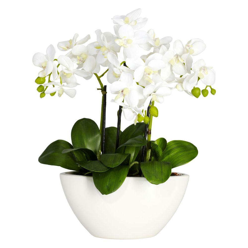 Nearly Natural 16 In H White Phalaenopsis Silk Flower Arrangement 4804 The Home Depot