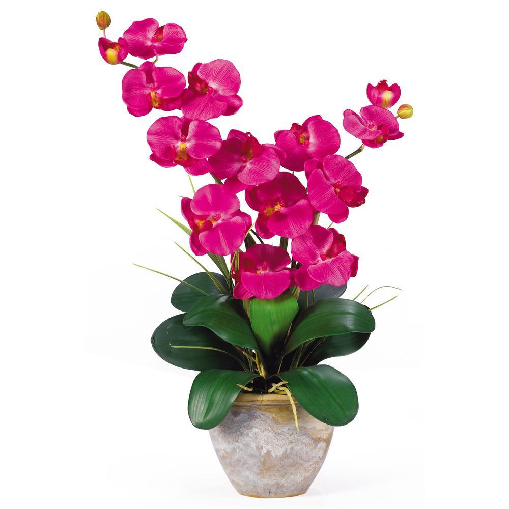Nearly natural 25 in double phalaenopsis silk orchid flower double phalaenopsis silk orchid flower arrangement in beauty izmirmasajfo