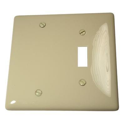 White 2-Gang Blank Plate Wall Plate (1-Pack)