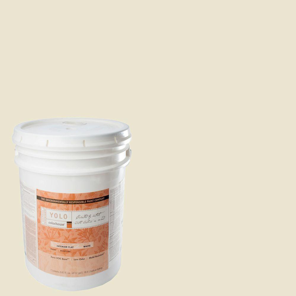 YOLO Colorhouse 5-gal. Air .02 Flat Interior Paint-DISCONTINUED