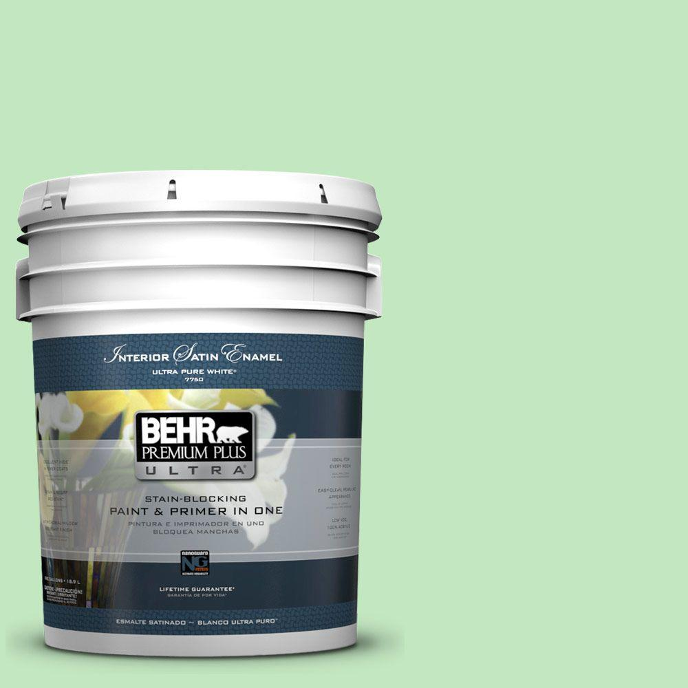 5 gal. #450A-3 Mountain Mint Satin Enamel Interior Paint and Primer