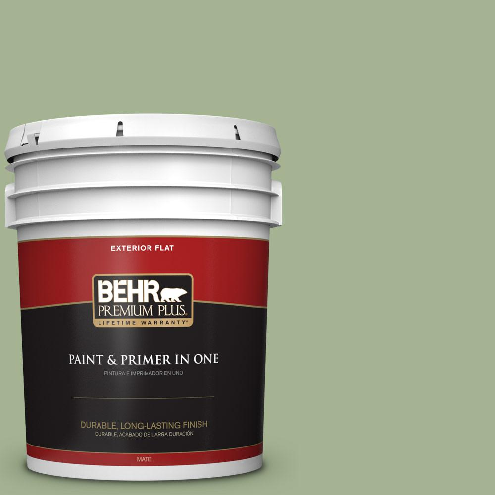 5 gal. #PPU11-06 Willow Grove Flat Exterior Paint
