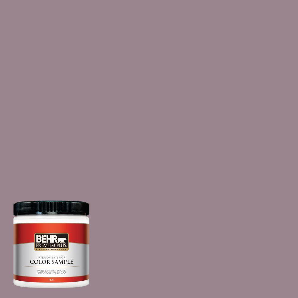 Home Decorators Collection 8 oz. #HDC-CL-05 Orchard Plum Zero VOC