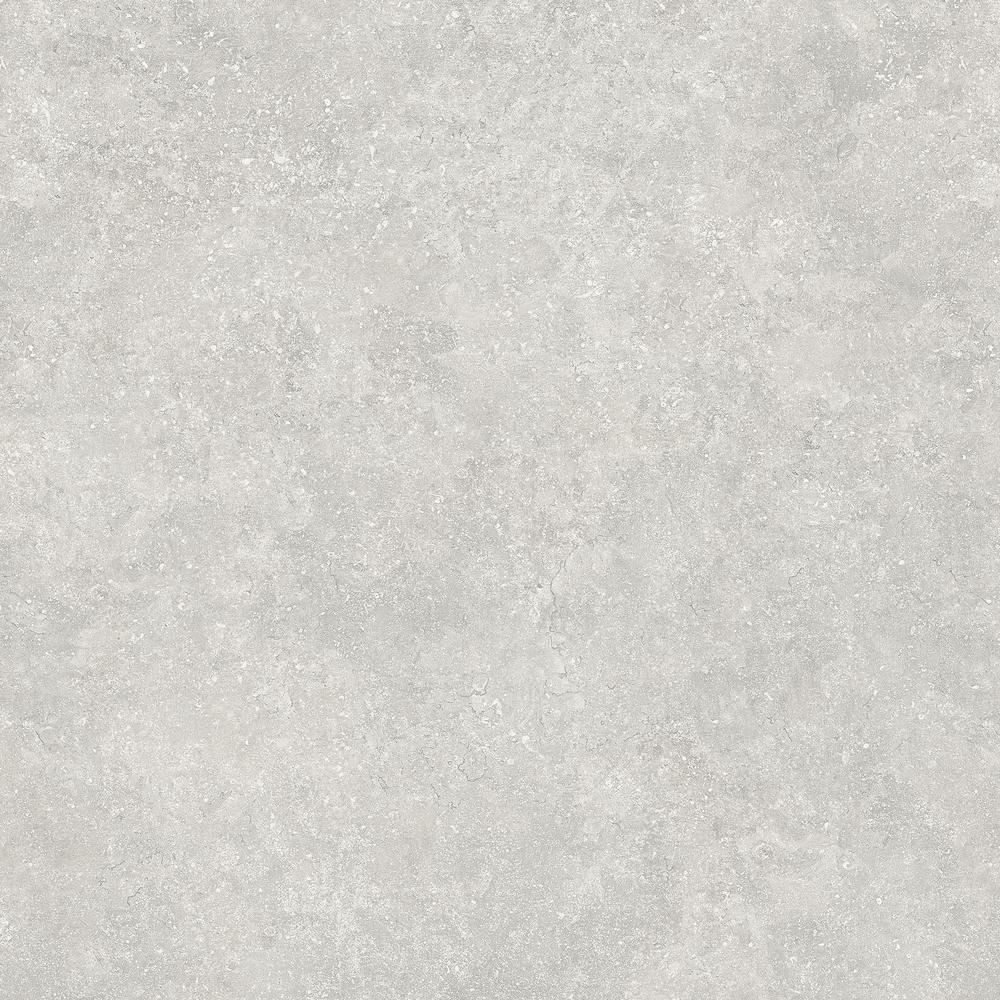 LifeProof LifeProof Starry Light 16 in. x 32 in. Luxury Vinyl Plank Flooring (24.89 sq. ft. / case)