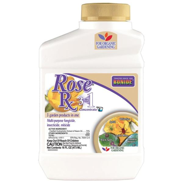 16 oz. Rose Rx 3-in-1 Concentrate