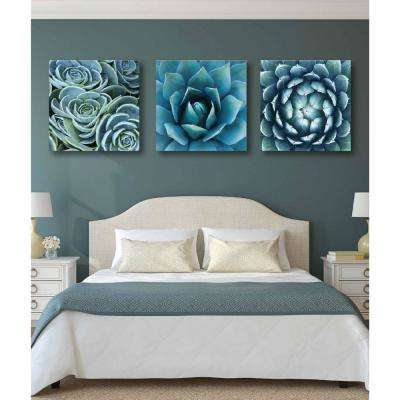 "3-Piece Set: 30 in. x 30 in. ""Succulent Gallery Wall Collection"" Gallery-Wrapped Printed Canvas Wall Art"