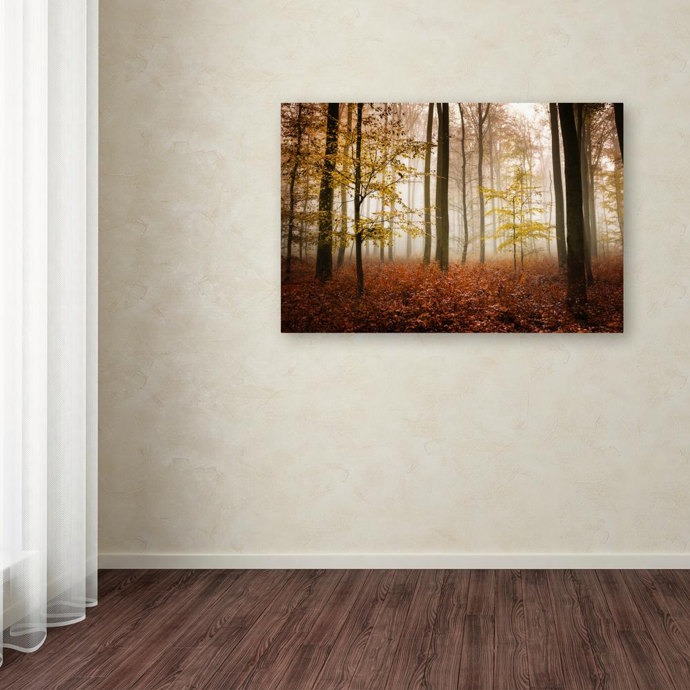 """16 in. x 24 in. """"Calmness"""" by Philippe Sainte-Laudy Printed Canvas"""