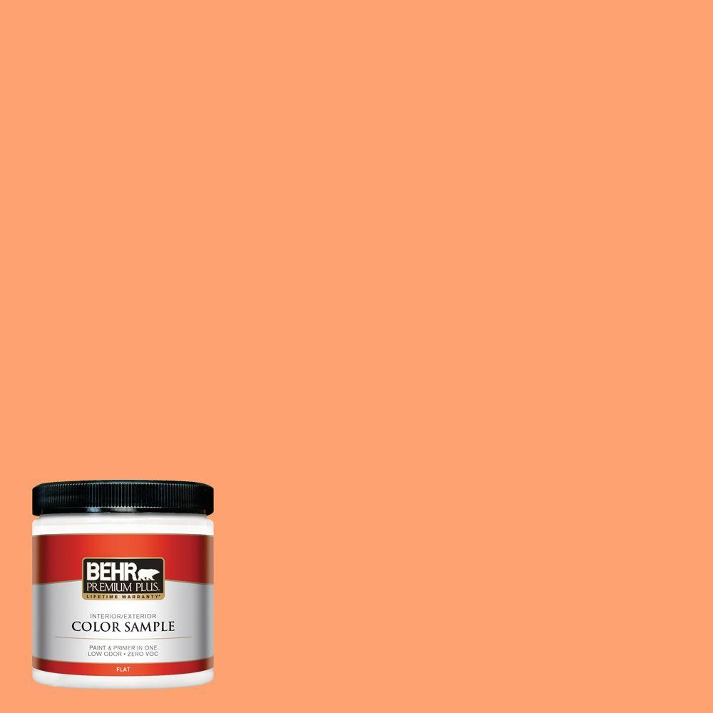 8 oz. #P210-5 Cheerful Tangerine Interior/Exterior Paint Sample